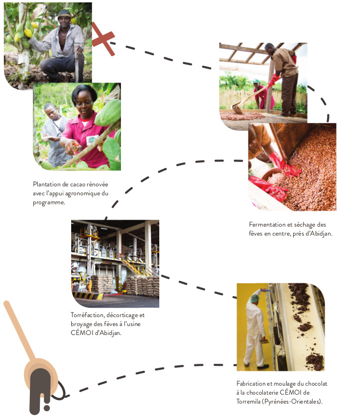 schema_filiere_cacao