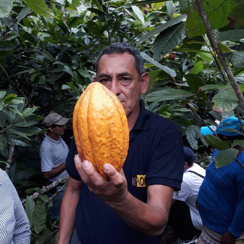 Voyage Equateur CÉMOI Cabosse planteur
